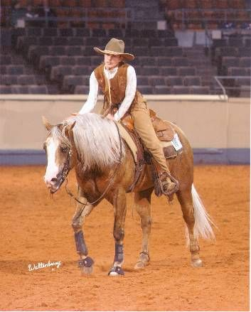 Quarter Horses For Sale Paint Horses Reining Horses For